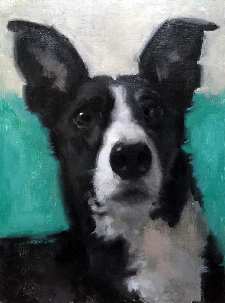 dog portrait in oil by Helen Davison