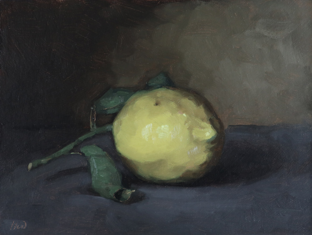 Still life oil painting of a lemon by Helen Davison