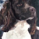 Painting of springer spaniel by Helen Davison